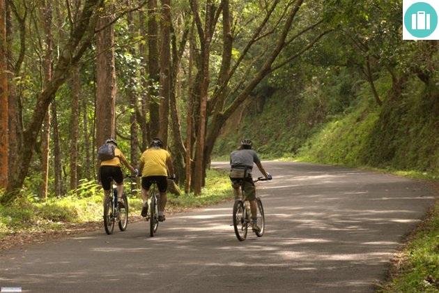 cycling-in-nilgiris (1)