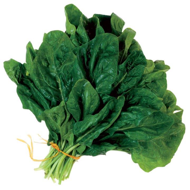 0904_spinach