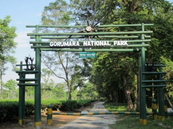 gorumara-national-park-india-india1152_13313977852-tpfil02aw-22428